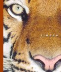 Tigers by peter Murrary