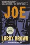 Joe a Novel